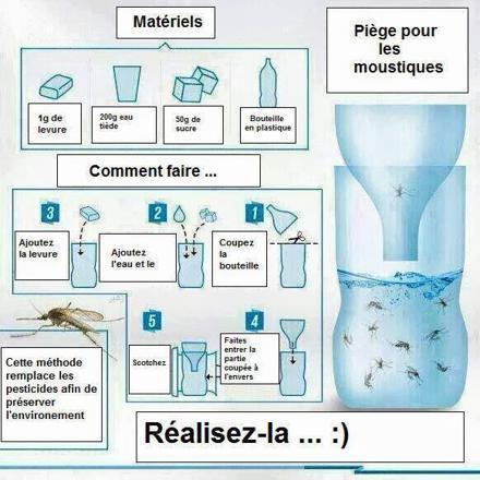 anti moustique ecologique