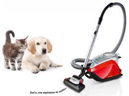 aspirateur efficace pour poil de chien