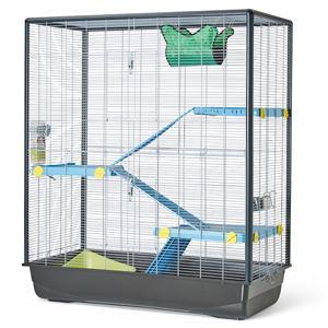 cage rat