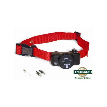 collier anti fugue pour petit chien