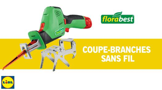 coupe branche lidl