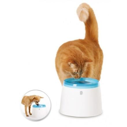 fontaine à eau pour chat silencieuse