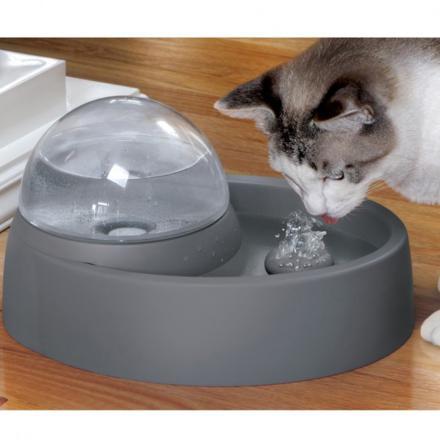 fontaine eau pour chat