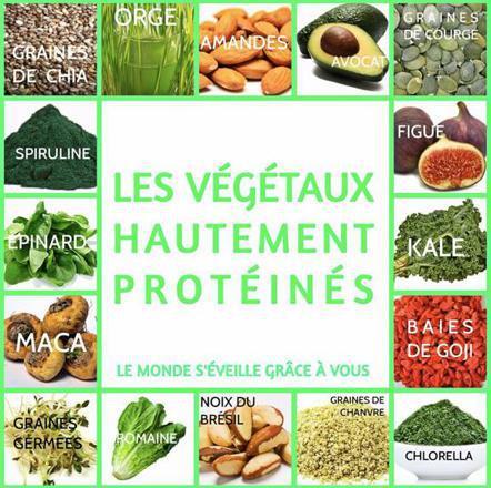 protéines ou les trouver