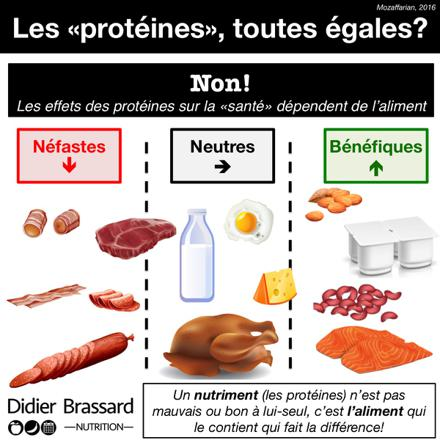quels sont les aliments riches en protéines