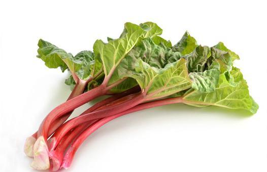 rhubarbe fruit ou légume