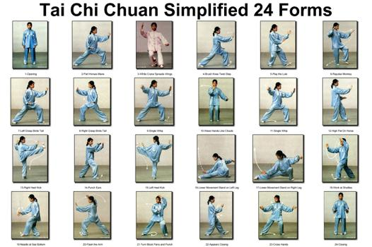 tai chi chuan yang